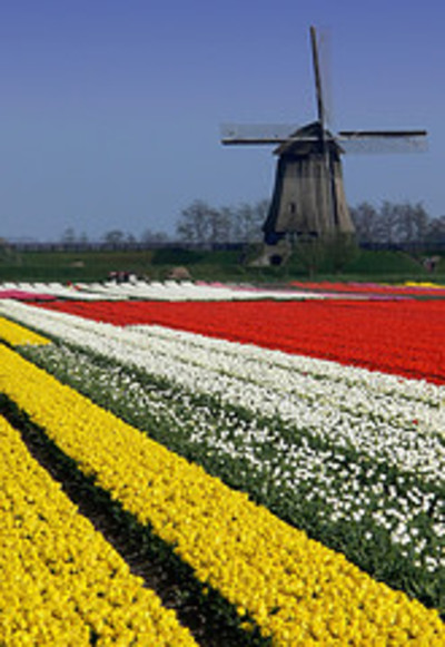 Travel_to_holland